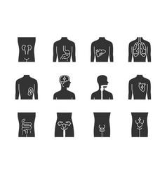 ill human organs glyph icons set sore heart vector image