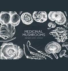 Medicinal mushroom background on chalkboard hand vector