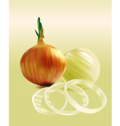 Onions and chopped onion rings vector