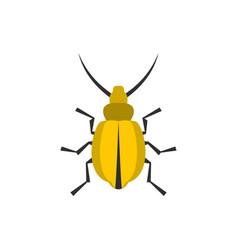 yellow beetle icon flat style vector image