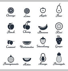 Icon set of fruits vector image vector image