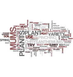 the perfect mum text background word cloud concept vector image vector image