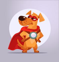 dog superhero character in mask vector image
