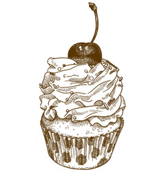 Engraving cupcake vector