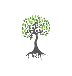 Family Tree Logo vector image