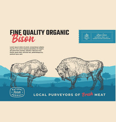 fine quality organic bison abstract meat vector image