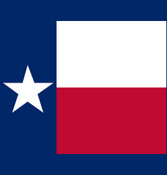 Flag and map texas vector
