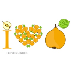 I love quinces vector