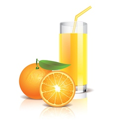 Object orange juice vector