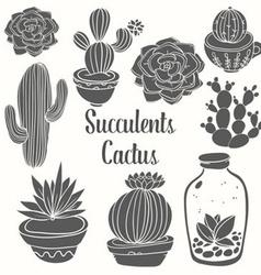 Succulent Cactus Set vector