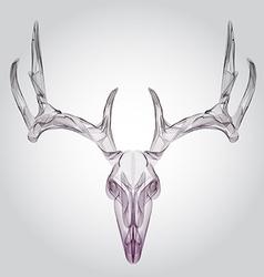 Wireframe hipster design deer skull head vector image