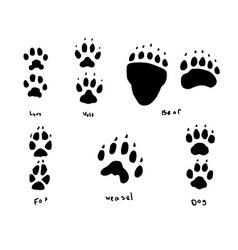 animal tracks vector image vector image