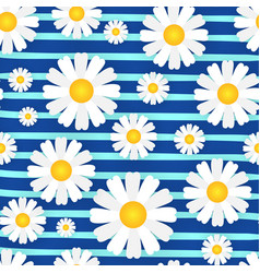 chamomile seamless pattern with flowers on vector image