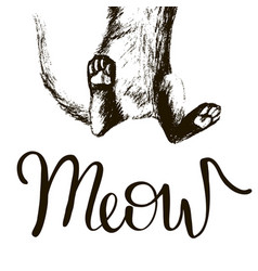 creative drawing of the cat inscription meow vector image