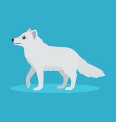 Cute arctic fox or polar fox icon isolated vector