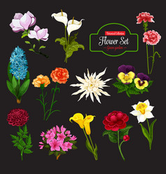 Flower icon with bunch spring flowering plant vector