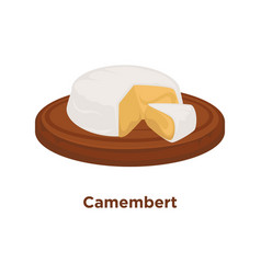 head of delicious camembert with cut triangular vector image