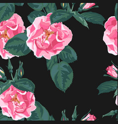 trendy floral background with rosa canina vector image