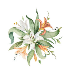Watercolor arrangement lily flowers and vector