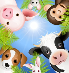 curious animals vector image