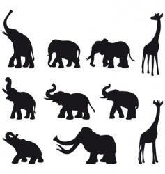 elefants mammoth giraffe vector image vector image