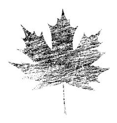 Black grunge maple leaf vector