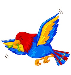 Colorful bird flying with worm in mouth vector image