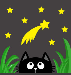 black cat looking up to comet with stars in the vector image