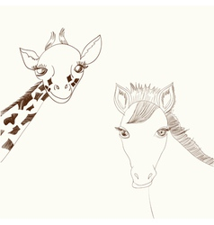 Giraffe and horse vector