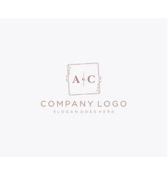 Initial ac letters decorative luxury wedding logo vector
