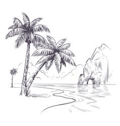 palm tree landscape sketch tropical palms ocean vector image