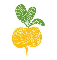 Root vegetables hand drawin doodle turnips vector