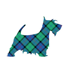 Scotch terrier tartan national pattern flower of vector
