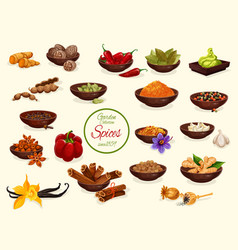 Spice condiment and food seasoning poster vector