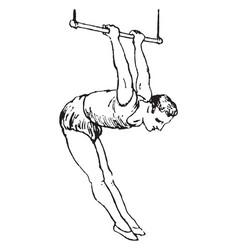 Trapeze vintage vector
