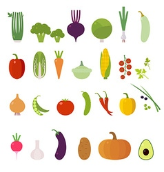 Vegetables Set Elements for cards poster and we vector