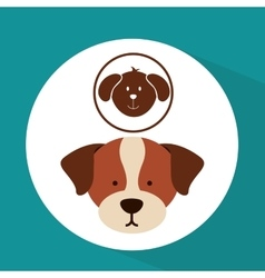 veterinary dog care icon vector image