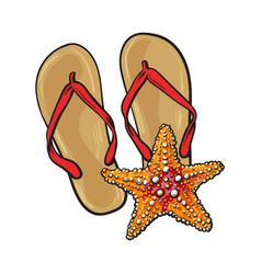pair of flip flops and starfish symbols of beach vector image