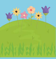 beautiful flowers garden scene vector image
