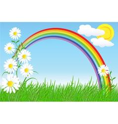 camomiles rainbow and sky vector image