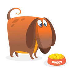 cartoon of cute dachshund vector image