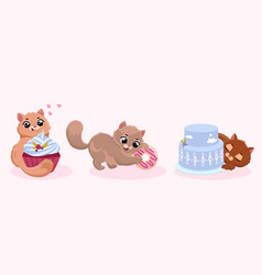 cute little kitty vector image