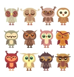 Funny cartoon owls set vector image
