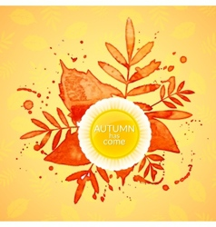 Autumn watercolor rowan leaves and spray vector image