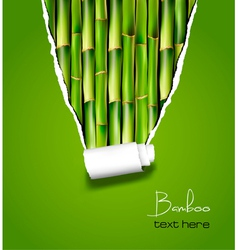 Bamboo background with ripped paper vector