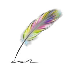 Colorful writing feather vector