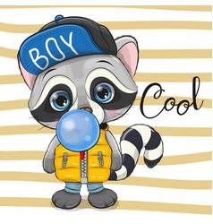 Cute cartoon raccoon with bubble gum vector