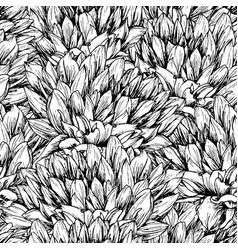 peony flower seamless pattern vector image