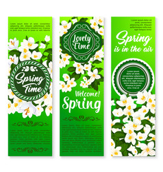 Spring holiday floral banner for springtime design vector