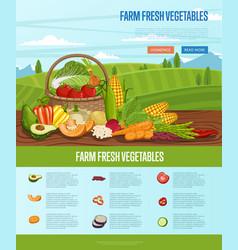 farm fresh vegetable banner with rural landscape vector image vector image